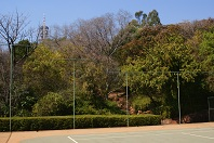 Cloghereen, Unisa Principal's residence